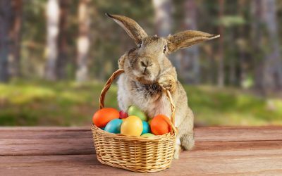 """An """"Egg'stra"""" special time at Windlesham!"""